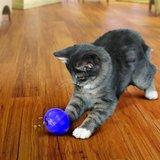 Kong cat treat dispensing ball_