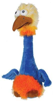 Happy pet bird brain struisvogel