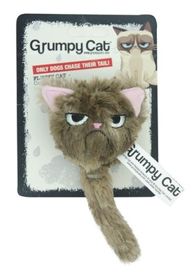Grumpy cat fluffy grumpy cat met catnip