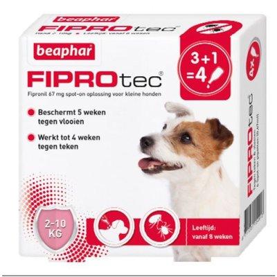 Fiprotec Hond 2-10kg 3+1 pipetten