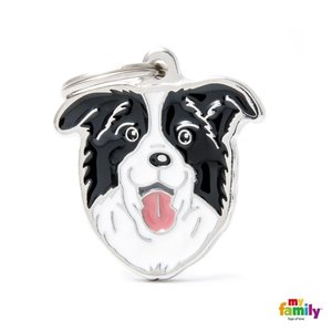 Penning Friends Border Collie