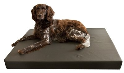 Hd orthopedisch honden ligbed grijs