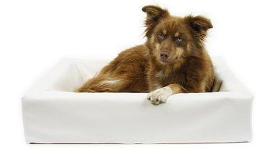 Bia bed kunstleer hoes hondenmand wit